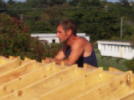 carpenter gavin on roof after all framing of rafters is complete.